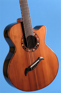 7 String Guitar with Redwood Soundboard by Edwinson Lutherie  edwinsonguitar@yahoo.com USA