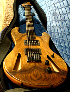 Grafted Walnut Guitar by Andy Mayer, MudSlide Guitars, USA Email
