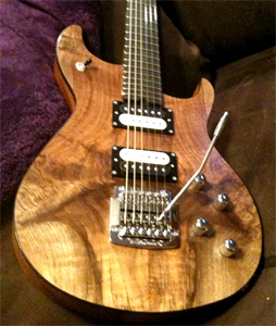 Solid Body Electric Guitar Photo Gallery - Tonewood com