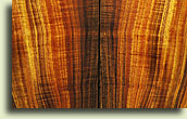 Guitar Wood from Oregon Wild Wood