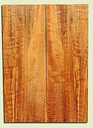 "MGES17914 - Mango, Solid Body Guitar or Bass Fat Drop Top Set, Air Dried for Excellent Colors, Good Color & Curl, Stellar Eco Friendly Guitar Wood, Salvaged from the Big Island of Hawaii, 2 panels each 0.31"" x 7.37"" x 21"", S2S"