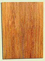 "MGES17928 - Mango, Solid Body Guitar or Bass Fat Drop Top Set, Air Dried for Excellent Colors, Excellent Color & Curl, Stellar Eco Friendly Guitar Wood, Salvaged from the Big Island of Hawaii, 2 panels each 0.41"" x 7.5"" x 21"", S2S"