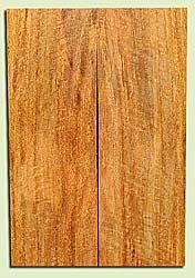 "MGES17929 - Mango, Solid Body Guitar or Bass Fat Drop Top Set, Air Dried for Excellent Colors, Excellent Color & Curl, Stellar Eco Friendly Guitar Wood, Salvaged from the Big Island of Hawaii, 2 panels each 0.4"" x 7.5"" x 22"", S2S"