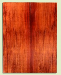"RWSB30051 - Redwood, Acoustic Guitar Soundboard, Dreadnought Size, Fine Grain Salvaged Old Growth, Excellent Color, Stellar Guitar Wood, 2 panels each 0.18"" x 8.375"" x 21.875"", S2S"