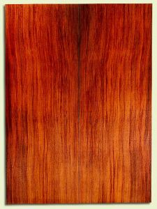 "RWSB30102 - Redwood, Acoustic Guitar Soundboard, Dreadnought Size, Med. to Fine Grain Salvaged Old Growth, Excellent Color, Highly Resonant Guitar Tonewood, 2 panels each 0.17"" x 8"" x 22"", S2S"