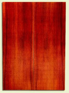 "RWSB30219 - Redwood, Acoustic Guitar Soundboard, Dreadnought Size, Med. to Fine Grain Salvaged Old Growth, Excellent Color, Stellar Guitar Tonewood, 2 panels each 0.17"" x 8"" x 22"", S2S"