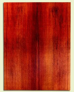 """RWSB30256 - Redwood, Acoustic Guitar Soundboard, Dreadnought Size, Med. to Fine Grain Salvaged Old Growth, Excellent Color, Highly ResonantGuitar Wood, 2 panels each 0.18"""" x 8.375"""" x 22"""", S2S"""
