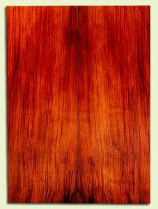 """RWSB30312 - Redwood, Acoustic Guitar Soundboard, Dreadnought Size, Med. to Fine Grain Salvaged Old Growth, Excellent Color, StellarGuitar Wood, 2 panels each 0.17"""" x 8"""" x 22"""", S2S"""
