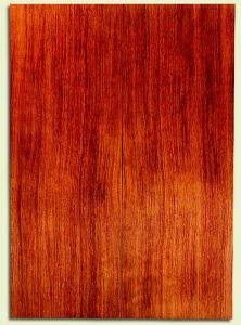 """RWSB30396 - Redwood, Acoustic Guitar Soundboard, Dreadnought Size, Med. to Fine Grain Salvaged Old Growth, Excellent Color, Amazing Guitar Tonewood, 2 panels each 0.16"""" x 7.875"""" x 21.875"""", S2S"""