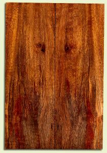 """MGES31298 - Mango, Solid Body Guitar Drop Top Set, Urban Salvage, Excellent Color& Curl, OutstandingGuitar Wood, 2 panels each 0.15"""" x 7.375"""" x 22"""", S2S"""