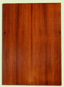 """RWSB31831 - Redwood, Acoustic Guitar Soundboard, Dreadnought Size, Med. to Fine Grain Salvaged Old Growth, Excellent Color, Unusual small white Spalt, Highly Resonant, 2 panels each 0.18"""" x 8"""" x 22"""", S2S"""