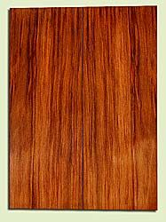 """RWSB31834 - Redwood, Acoustic Guitar Soundboard, Dreadnought Size, Med. to Fine Grain Salvaged Old Growth, Excellent Color& Contrast, GreatGuitar Tonewood, 2 panels each 0.18"""" x 8"""" x 22"""", S2S"""
