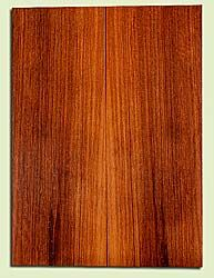 """RWSB31854 - Redwood, Acoustic Guitar Soundboard, Dreadnought Size, Med. to Fine Grain Salvaged Old Growth, Excellent Color& Contrast, GreatGuitar Tonewood, 2 panels each 0.18"""" x 8"""" x 22"""", S2S"""