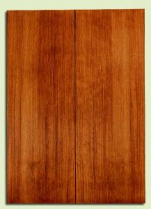 "RWES31876 - Redwood Drop Top Set, Med. to Fine Grain Salvaged Old Growth, Excellent Color & Contrast, Great Guitar Tonewood, 2 panels each 0.18"" x 8"" x 22"", S2S"