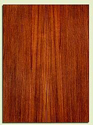 """RWSB31955 - Redwood, Acoustic Guitar Soundboard, Dreadnought Size, Med. to Fine Grain Salvaged Old Growth, Excellent Color& Contrast, GreatGuitar Tonewood, 2 panels each 0.18"""" x 8"""" x 22"""", S2S"""