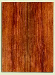 "RWSB32031 - Redwood, Acoustic Guitar Soundboard, Dreadnought Size, Med. to Fine Grain Salvaged Old Growth, Excellent Color & Contrast, Great Guitar Tonewood, 2 panels each 0.18"" x 8"" x 21.875"", S2S"