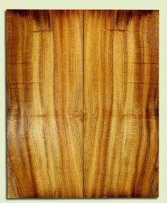"MYES32120 - Myrtlewood, Solid Body Guitar Les Paul or BassTop Set, Med. to Fine Grain, Excellent Color, GreatGuitar Tonewood, 2 panels each 0.85"" x 8"" x 19.625"", S2S"