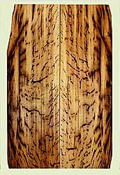 """MYES41959 - Myrtlewood, Solid Body Guitar Fat Drop Top Set, Med. to Fine Grain, Excellent Color& Curl, GreatGuitar Wood, Note: Check outside of layout, 2 panels each 0.44"""" x 6 to 7.375"""" x 23.625"""", S2S"""