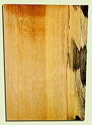 "SGEB42138 - Sugar Pine One Piece, Solid Body Guitar or Bass Body Blank, Fine Grain Salvaged Old Growth, Excellent Color, Great Guitar Wood, 1 panels each 1.79"" x 15.75 to 17"" x 22.75"", S2S"