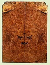 """MAES42724 - Western Big Leaf Maple, Solid Body Guitar Drop Top Set, Med. to Fine Grain Salvaged Old Growth, Excellent Color& Burl, GreatGuitar Wood, Note: Bark inclusions , 2 panels each 0.3"""" x 8.25"""" x 22.25"""", S2S"""
