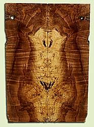 """MAES43919 - Western Big Leaf Maple, Solid Body Guitar Drop Top Set, Med. to Fine Grain, Excellent Color, OutstandingGuitar Wood, Note: This set has voids and bark inclusions., 2 panels each 0.23"""" x 7.875"""" x 22.875"""", S2S"""