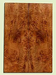 """MAES43923 - Western Big Leaf Maple, Solid Body Guitar Drop Top Set, Med. to Fine Grain, Excellent Color, OutstandingGuitar Wood, 2 panels each 0.24"""" x 8.125"""" x 23.5"""", S2S"""