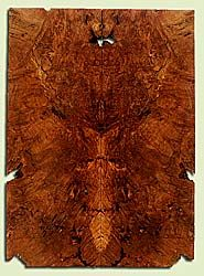 """MAES43935 - Western Big Leaf Maple, Solid Body Guitar Drop Top Set, Med. to Fine Grain, Excellent Color, OutstandingGuitar Wood, Note:  This set has bark inclusions and voids., 2 panels each 0.28"""" x 8.25"""" x 22.75"""", S2S"""