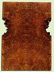 """MAES43941 - Western Big Leaf Maple, Solid Body Guitar Drop Top Set, Med. to Fine Grain, Excellent Color, OutstandingGuitar Wood, Note:  This set has bark inclusions and voids., 2 panels each 0.28"""" x 6 to 8.25"""" x 23"""", S2S"""