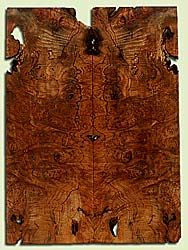 """MAES43977 - Western Big Leaf Maple, Solid Body Guitar Fat Drop Top Set, Med. to Fine Grain, Excellent Color, OutstandingGuitar Wood, Note:  This set has voids and bark inclusions., 2 panels each 0.36"""" x 8.125"""" x 22.5"""", S2S"""