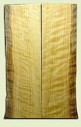 """CDES06894 - Curly Port Orford Cedar Solid Body Guitar Top Set, Very Good Figure, Salvaged Old Growth, Excellent Tap Tone, Strat or Bass Guitar size.  2 panels each  .17"""" x 7.5>6.25"""" x 23.5""""  S1S  Rare Guitar Wood"""